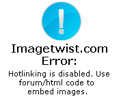 Converting IMG TAG in the page URL ( img83.imagetwist.com@ )